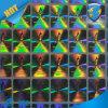 Etiqueta engomada privada falsificada anti del holograma