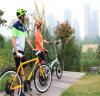 bici elettrica piegante della montagna 22  48V