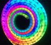 i tubi al neon con CI, tubo al neon della flessione di 60LEDs/M di 300LEDs/Roll Digitahi flessibile impermeabilizzano; Tubo della flessione LED di Digitahi