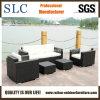 Софа мебели /Rattan напольной софы ротанга установленная/установленная софа сада (SC-B9508)