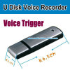 Voice ActivationのSelling熱い4GB USB Voice Recorder