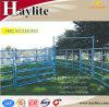 Q235B 암소 가축 우리를 위한 강철 가축 양 경작 담 위원회