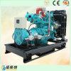 motore di potere di spirito del gruppo elettrogeno del gas naturale 50kVA