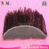 インドのアフリカのねじれた巻き毛のバージンの人間の毛髪13X4は閉鎖のレースのFrontalをじりじり動かす