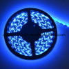 indicatore luminoso di striscia flessibile blu di 12V-24V 30LEDs/M SMD5050 LED