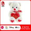 Neuer Valentinsgruß-Geschenk-Spielzeug-Plüsch-Teddybär des Entwurfs-2016