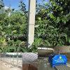 De concrete Machine die van de Kolom het Concrete Latwerk van de Druif maken