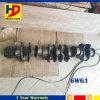 Eixo de manivela do motor da Dirigir-Injeção 6wg1