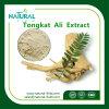 200:1 superventas del extracto de la raíz de Tongkat Ali