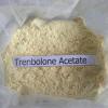 Carbonato por atacado 99.5% de Trenbolone Cyclohexylmethylcarbonate Trenbolone Hexahydrobenzyl do acetato de Trenbolone