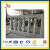 Marble bianco Handrails per Terrace