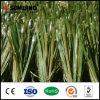 Hierba artificial del verde del balompié del precio bajo