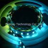 Tira flexible de la magia 1903 5050 SMD RGB LED de DC12V
