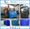 Máquina de molde plástica do sopro de 10000 litros grande/Machiery moldando de sopro