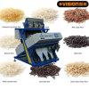 2014 o modelo o mais atrasado, máquina de classificação Vsn3000-G3a da cor do arroz