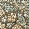 Spuit de Verglaasde Ceramische Tegels van de Vloer in (6D34)