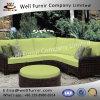 Furnir buono un sofà sezionale delle 5 parti con l'ammortizzatore Wf-17025