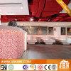 수신 반대 훈장 신선한 빨간 우지직하는 소리 유리제 모자이크 (G815011)