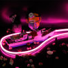 120V/230V/12V/24V diodo emissor de luz Ultra-Thin Neon Flex Rope Light