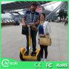 Carro de pensamento elétrico da ferramenta verde do transporte dos produtos