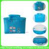 Sac d'emballage chaud d'achats de sac de refroidisseur de la vente PEVA pour la boisson de nourriture