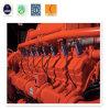 Des heißen Verkaufs-Biogases bester Preis des /Biomass-gasgenerierender Set-300kw für Howe Energie Genset