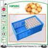 Cassa pieghevole di plastica dell'uovo della cassa dell'imballaggio per uova