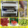 Macchina verde oliva automatica della puntinatura con l'alta qualità
