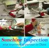 製品Inspectionsおよび中国、インドおよびアジアのProduct Testing