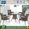 Rota al aire libre que cena los muebles determinados del jardín de vector del jardín de la silla del patio (TG-1061)