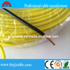 Baixo Voltage 450/750V Thw 8 10 12 16 PVC Insulation Electric Wire