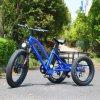 سمين إطار العجلة [3وهيلس] كهربائيّة درّاجة شحن كهربائيّة [تريك] درّاجة ثلاثية