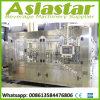 Chaîne de production remplissante automatique approuvée de l'eau de pétillement de la CE