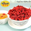 Superfood: Goji secado chinês (Wolfberry) -220/280/380/580