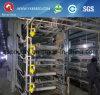 Algeira를 위한 최고 판매 층 감금소