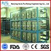 Sistema dell'acqua EDI di processo di elevata purezza