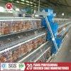 Клетки цыпленка слоя конструкции изготовления Китая самые лучшие для сбывания