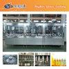 Proyecto de la maquinaria de relleno del jugo del estaño de Turquía