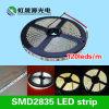 Guide optique flexible de bande de SMD2835 17W/M DEL pour l'éclairage de Decotation