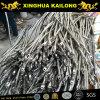 Câble en acier inoxydable AISI304 et AISI316