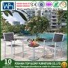 Патио сада обедая комплекты для напольной мебели (TG-937)
