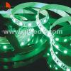 비 꿈 색깔 SMD 램프를 가진 5050 RGB LED 지구 빛을 방수 처리하십시오