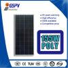 Поли панель солнечных батарей фабрика 155 ватт сразу к России и Австралии