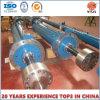 Grande cilindro idraulico professionale per il cancello della diga
