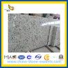 Белый Rose Granite Countertop для Kitchen или ванной комнаты