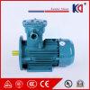 IP55 AC Explosiebestendige ElektroMotor van de Leverancier van China Gloden