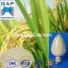 Extracto Ferulic natural del salvado de arroz del ácido el 99%