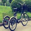 Triciclo eléctrico Rseb-705 de la talla grande de Pedelec