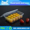 Contenitore di alimento di plastica a perdere del commestibile della FDA LFGB