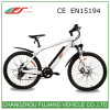 Nueva bicicleta eléctrica formada de FJ, bicicleta eléctrica
